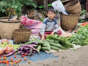 Nachwuchs-Gemüseverkäufer