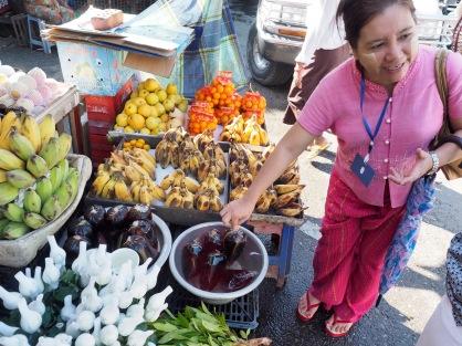 Burmesisches Shampoo, alles rein pflanzlich