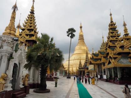 Shwedagon 7