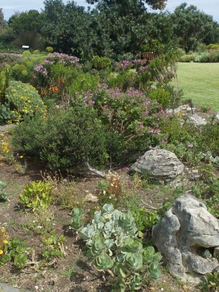 Harold Porter National Botanic Garden 6